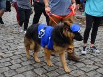 police man dog