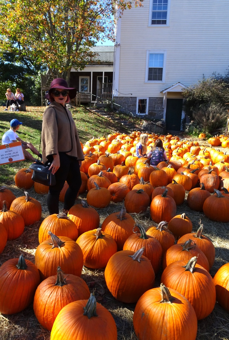 Pumpkin patch me