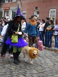 wizard of oz lion witch scarecrow